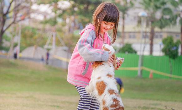 5 Fun Activities Your Kid Can Play With the Dog
