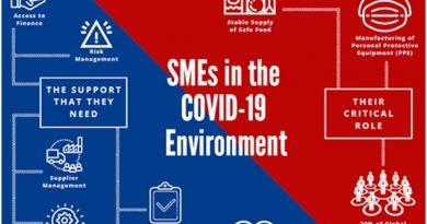 SMEs in the covid19 environment